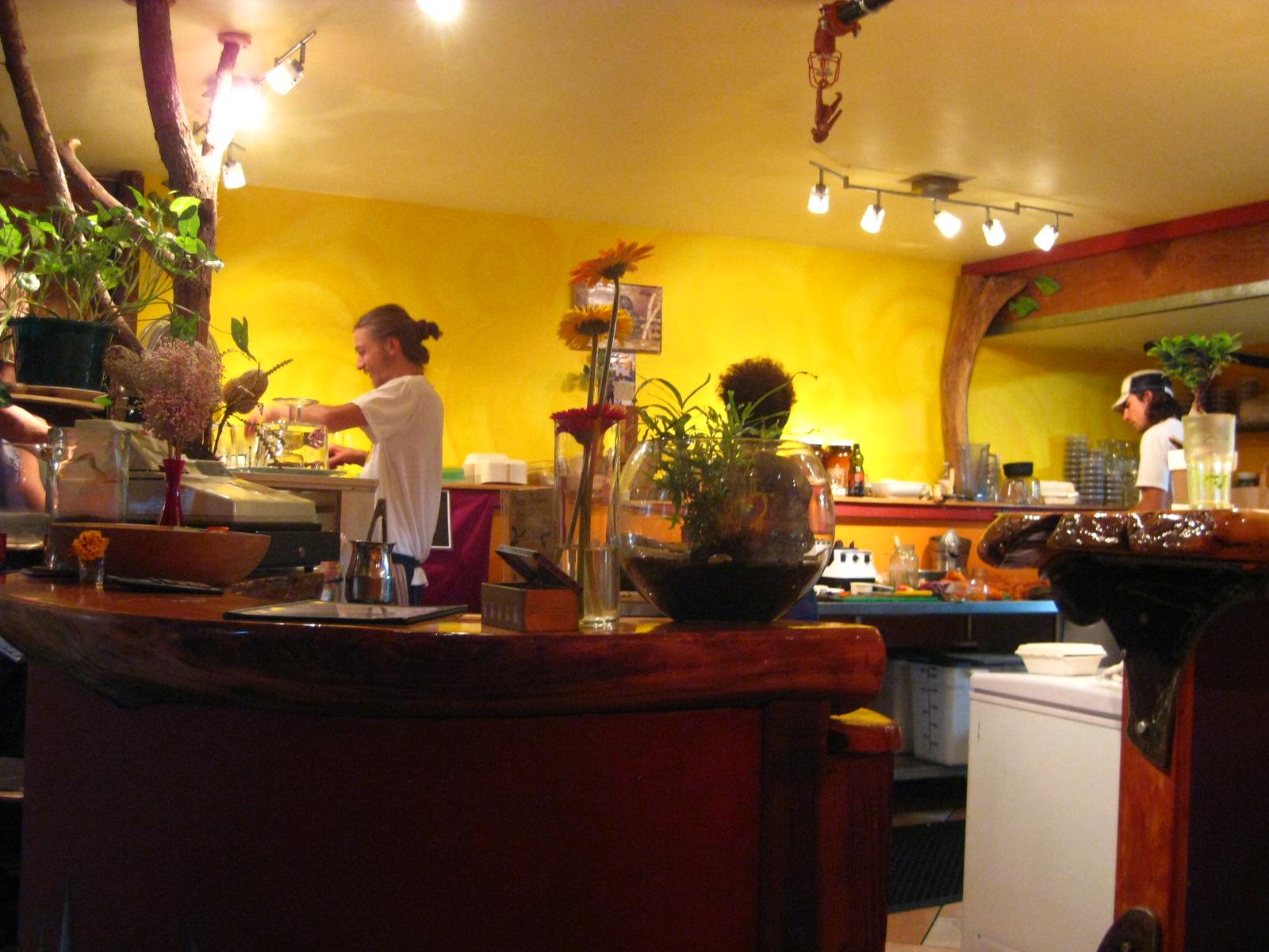 shop Der Vitamingehalt der deutschen Nahrungsmittel: